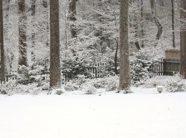 Our back yard in the snow, 2010