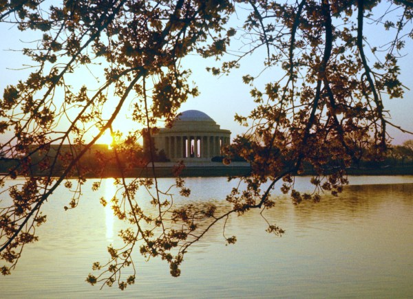 The Thomas Jefferson Memorial is framed by cherry blossom trees on Easter, sometime around 1978.