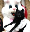 Pasha with Easter Bunny
