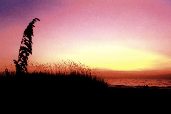 Sunrise in Garden City SC (from Sheila)