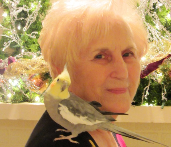 Sweetie with a sweetie: Aunt Peggy with her winsome cockatiel, December 2011