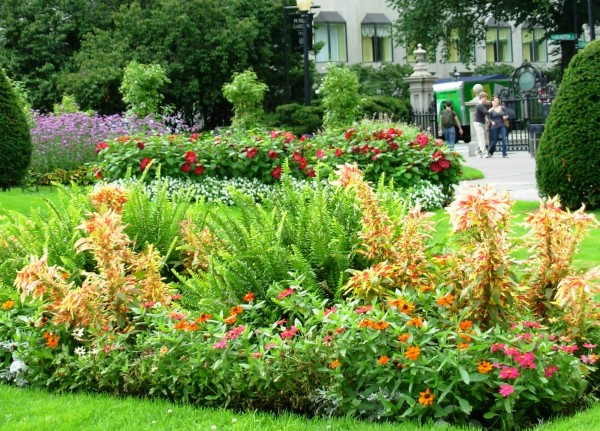 The well-tended flowers of Boston Public Gardens on a lovely September day in 2007