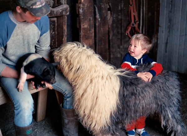 Kindness is a trait we start to learn early. Drew visits the animals on my friend Judy's farm, near Dayton, Ohio, 1987.