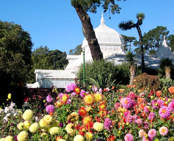 Just another glorious fall day at Golden Gate Park, San Francisco, October 2003