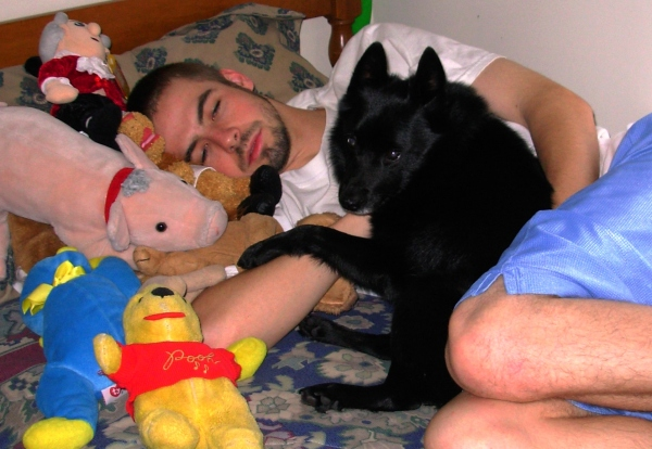 Drew naps on Matt's bed with Pasha and other cuddly critters, December 2006