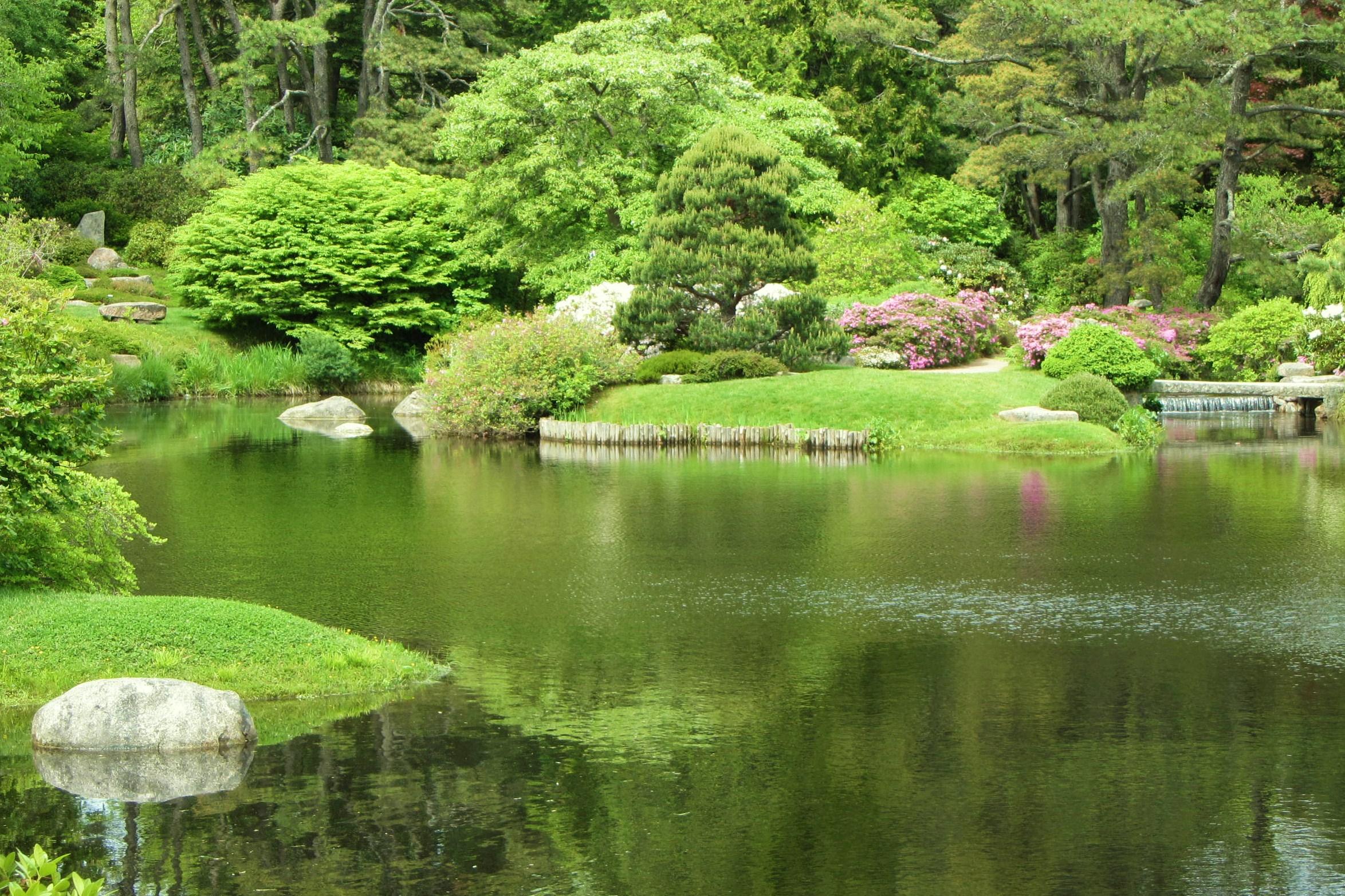 Trees, grass, water, rocks; all ordinary, extraordinarily beautiful. A garden in Bar Harbor, Maine, June 2012