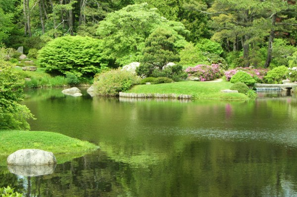 Trees, grass, water, rocks; all ordinary, extraordinarily beautiful. A garden in Bar Harbor, Maine, June 2012