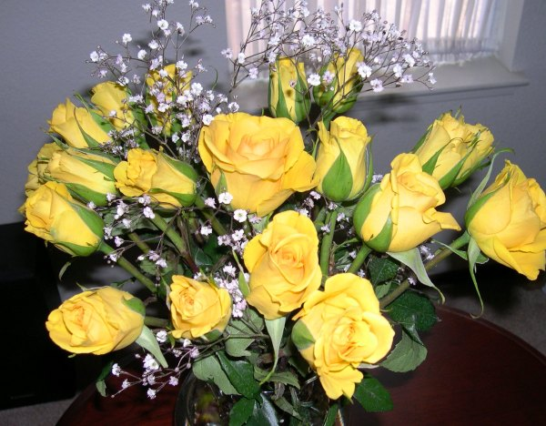 Yellow Roses from Jeff, June 2003
