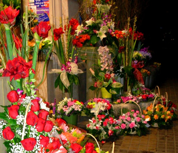 A flower merchant decorates a sidewalk in Barcelona, May 2008.