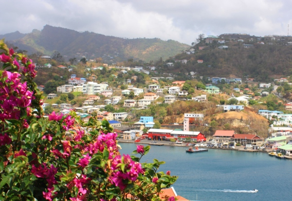 Photographed in early March 2010, sunny Grenada was a sight for sore eyes!