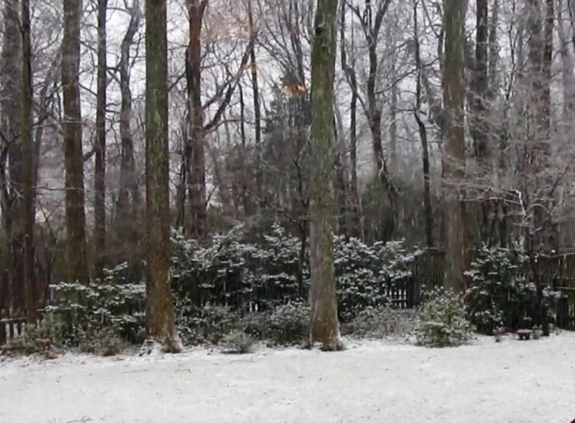 This clip is from a short video I filmed on 3-24-13, when I don't remember it snowing.