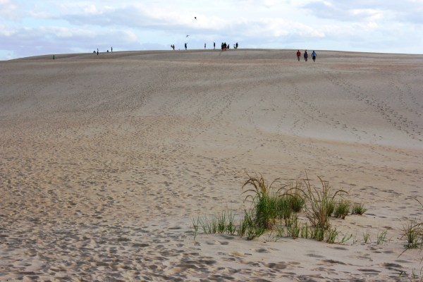 The dunes at Jockey's Ridge, on the outer banks of North Carolina, are great for strolling, kite flying, and staying sane.  September, 2013