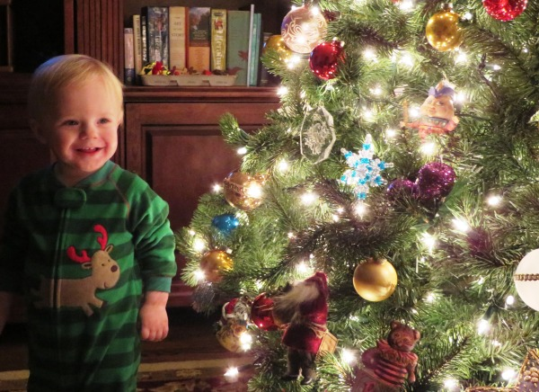 Grady greets you from our Alexandria home, December 23, 2014.