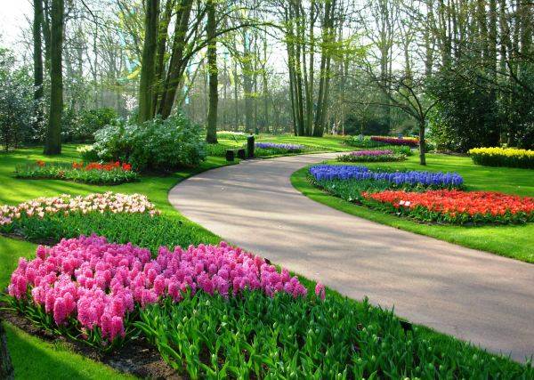 Stroll with me down memory lane at Keukenhof, Netherlands, March 2007.