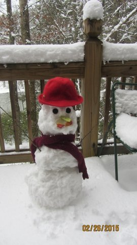 Eric & Sherry created this low-carb snow person...