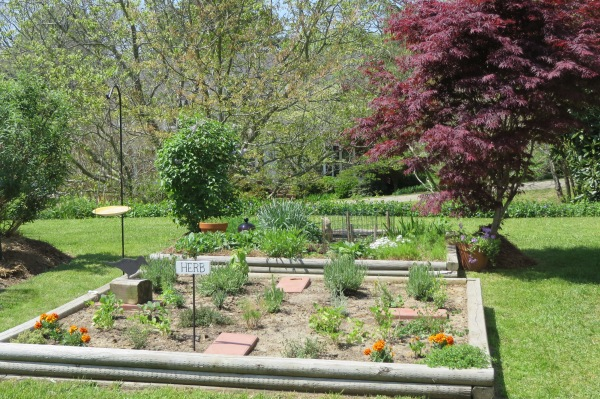 Yorktown garden stroll 4 April 2015