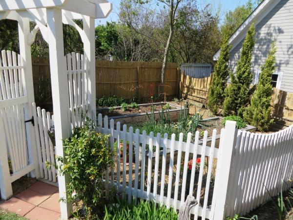 Yorktown Garden Stroll, Darla's herb garden, April 2015