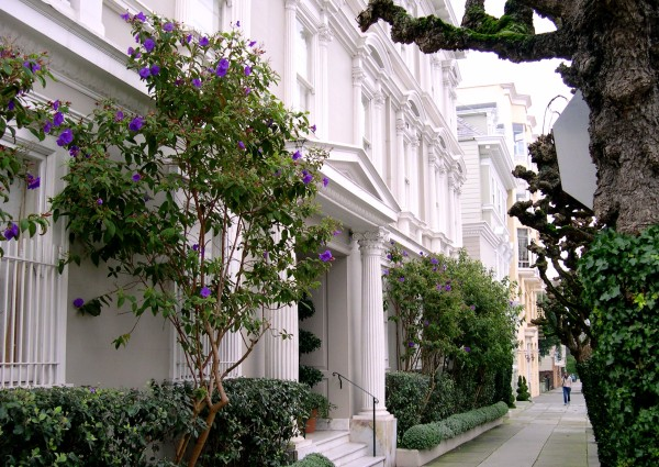 On a day trip into the city, I enjoyed another world entirely.  Pacific Heights, San Francisco, January 2004