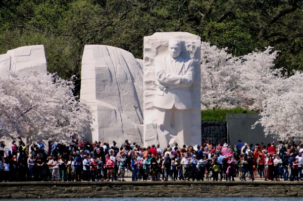 Crowds admire the King Monument during the Cherry Blossom Festival, April, 2015.