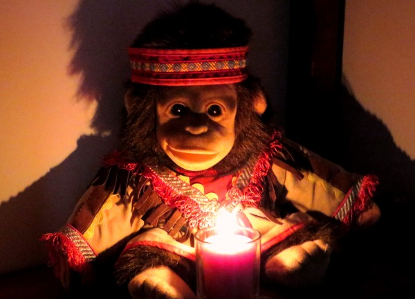 The Fire Monkey who runs this blog sends you best wishes for an auspicious year!