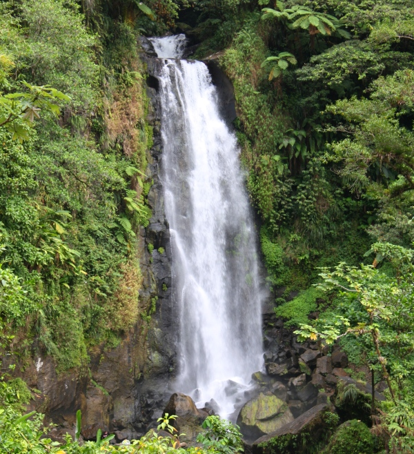 Trafalgar Falls, Dominica, March 2010