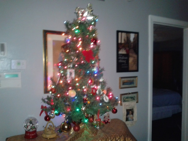 Patricia sends her Christmas greetings to us, along with a photo of her glowing tree.